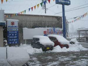 展示場 大雪