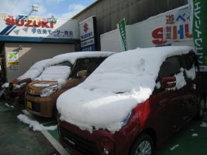 雪の展示車